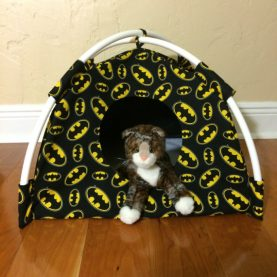 Cat Tents and Beds